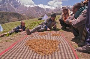 Photo by Uttam Babu Shrestha