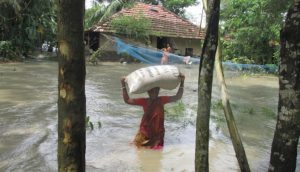 A resident of Sagar island is able to save just one bag of wheat as she is forced out of her home by the high tide.
