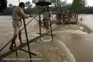 bangladesh river crossing made of bamboo built in the flood aftermath