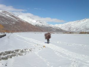 A Wakhi man collecting firewood in the light snow. (Photo: Wikimedia)