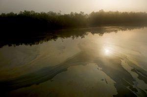 Oil spill over the Shela River [image by Arati Kumar-Rao/ Peepli.Org]