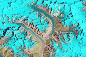 The Karakorum glaciers [image courtesy earthobservatory.nasa.gov]