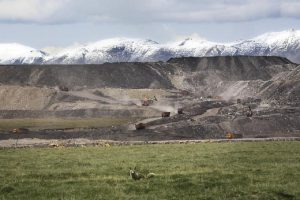 Fox in front of the Qinghai Coking Coal Group opencast coal mine, with the Chi-lien mountains in the background. [image by Greenpeace]