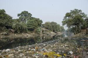 Rubbish on the banks of the Adi Ganga