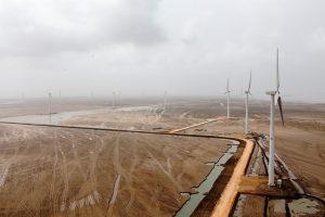 Tenaga Generasi Limited's  wind farm in Thatta district of the Indus Delta.