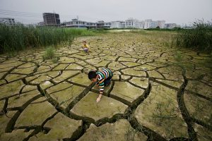 Once fertile, these fields in Shantou, Guangdong province, have now been abandoned. (Image by Lu Guang / Greenpeace)