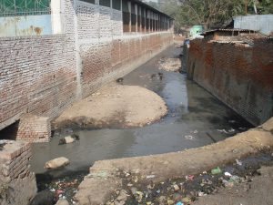 Drain carrying toxic effluents to the Ganga in Kanpur [image by Juhi Chaudhary]
