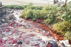 Waste water from dyeing plants flowing into the shallow Falgu river [image by Alok Gupta]