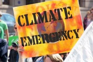 Trump's order undermines US leadership in climate science [image by John Englart]
