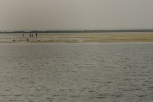 The Ganga has silted up, this is the situation near Farakka [image by Arati-Kumar Rao]