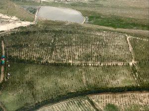 [:en]New plantations to replace forests ravaged by illegal loggers in Khyber Pakhtunkhwa. Widespread deforestation has led to devastating floods in northern Pakistan in recent years (Photo: PTI Official record)[:ne]New plantations to replace forests ravaged by illegal loggers in Khyber Pakhtunkhwa. Widespread deforestation has led to devastating floods in northern Pakistan in recent years (Photo: PTI Official record)[:hi]New plantations to replace forests ravaged by illegal loggers in Khyber Pakhtunkhwa. Widespread deforestation has led to devastating floods in northern Pakistan in recent years (Photo: PTI Official record)[:bn]New plantations to replace forests ravaged by illegal loggers in Khyber Pakhtunkhwa. Widespread deforestation has led to devastating floods in northern Pakistan in recent years (Photo: PTI Official record)[:ur] خیبر پختون خواہ میں غیر قانونی کٹائی سے تباہ حال جنگلات کی جگہ از سرنو شجرکاری کی جارہی ہے- بڑے پیمانے پر درخت کشی کی وجہ سے حالیہ سالوں میں شمالی پاکستان بدترین سیلابوں کی زد میں رہا ہے - (تصویر بشکریہ -پی ٹی آئی آفیشل ریکارڈز )[:]