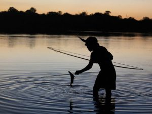 The government isbacking away from big mega-dams but Chinese companiesare still interested(Image:AmazonWatch)