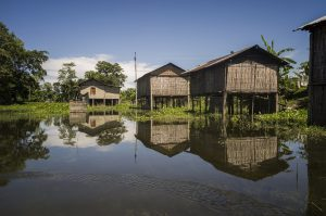 Homes surrounded by water in Salmara village, Majuli [image by: INDIA ACTED]