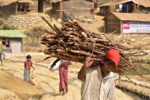 man collecting firewood in Rohingya [image by: Mokammel Shuvo]
