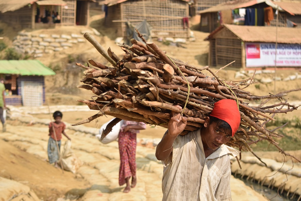 The daily slog to get firewood begins early in the day for the Rohingya refugees [image by: Mokammel Shuvo]