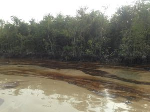 The polluted rivers near the Sundarbans [image by: Pinaki Roy]