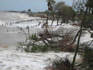 Inflow of tidal waters, Mousuni island, Sundarbans © Arjun Manna/WWF-India