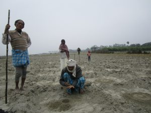 Silt farmers growing vegetables on sand deposited by the Gandak river [image by: Nidhi Jamwal]