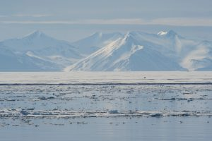 The sea ice and mountains in Spitsbergen, Svalbard during the Arctic summer [Image by: Josh Harrison/Alamy]