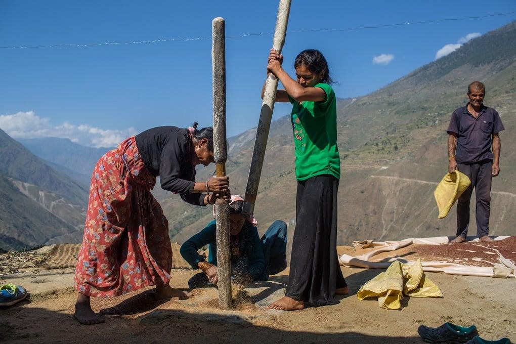 Women in Kapri village Bajura, western Nepal, preparing millet for use after harvest [Image by Nabin Baral]