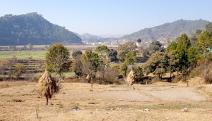 Gagas valley in Uttarakhand, irrigated by the Gagas river [image by: Hridayesh Joshi]
