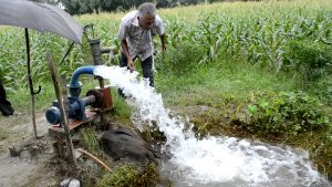man using privately owned water pump to do flooding irrigation