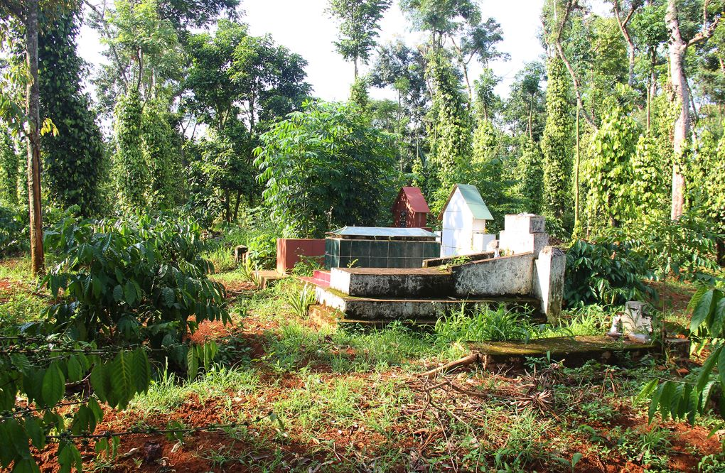 The family cemetery at the coffee farm Eban inherited from his grandparents
