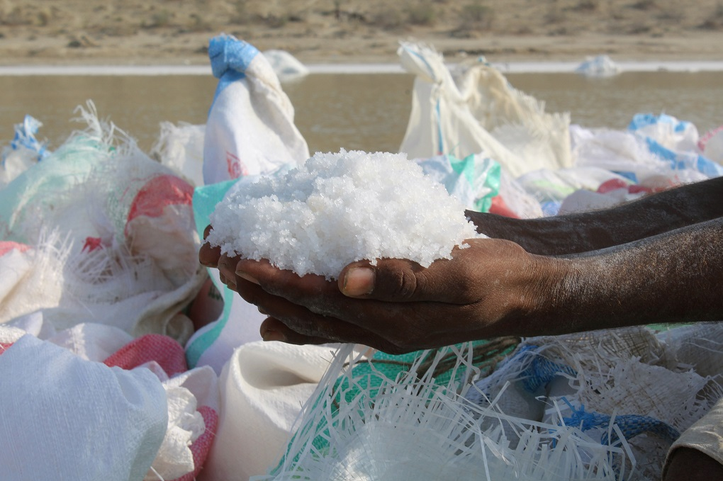The salt is the livelihood for people here, but also the cause of their wounds [image by: Akhtar Hafeez]