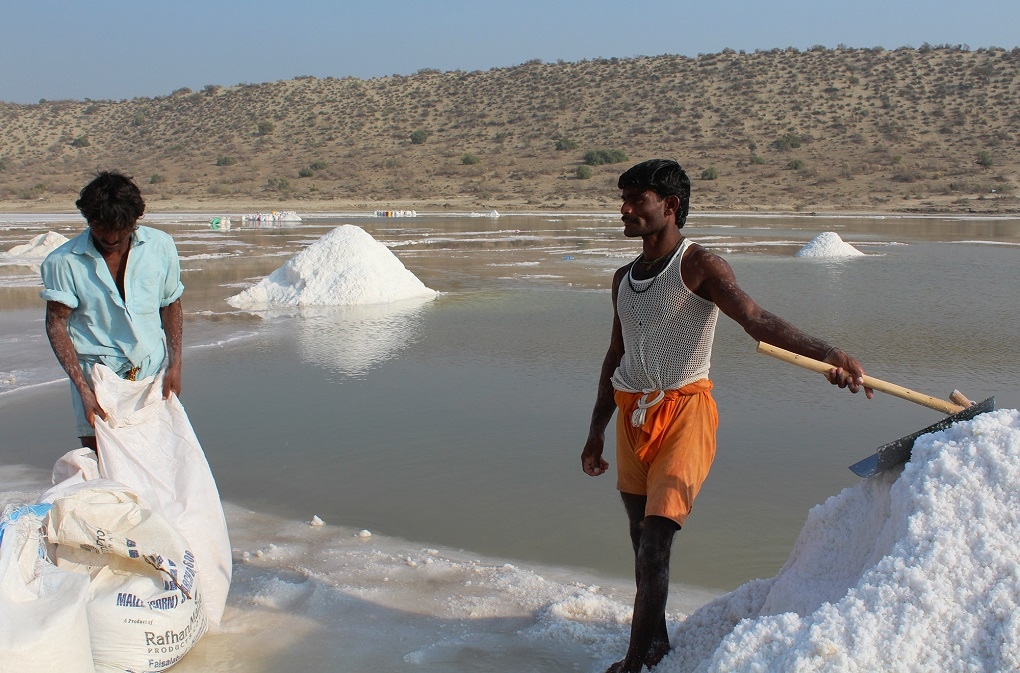 """workers collecting salt. Their health is """"not critical"""" [image by: Akhtar Hafeez]"""