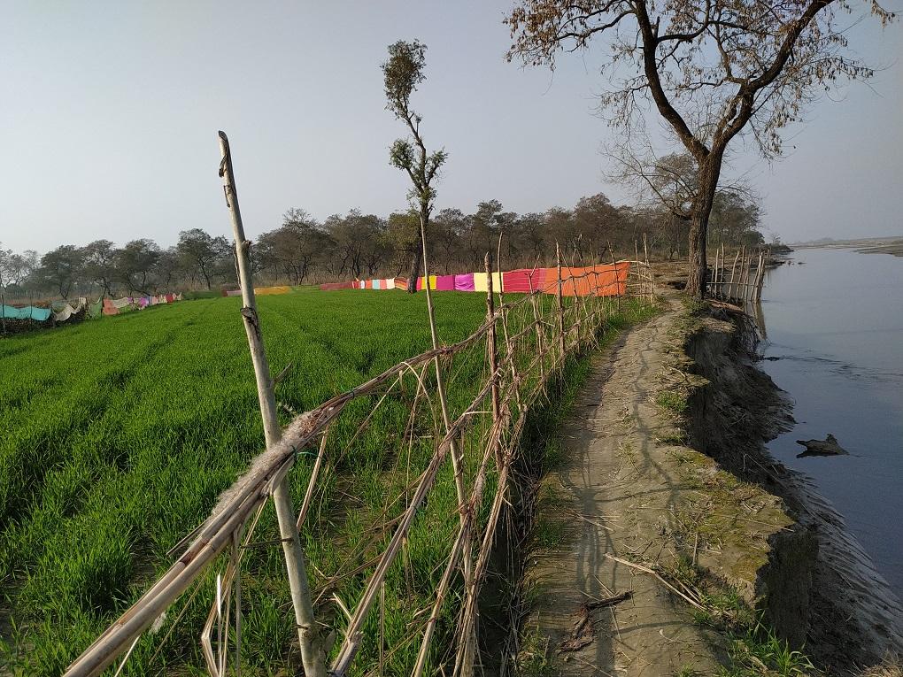 The river eating away the land at the edge of Chandiya Hazra village [image by: Manoj Singh]
