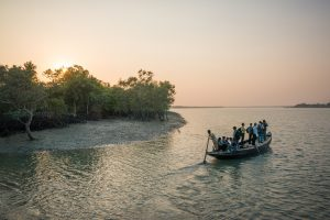 Locals travel home on a wooden boat in the Sundarbans National Park, West Bengal [image: Alamy]