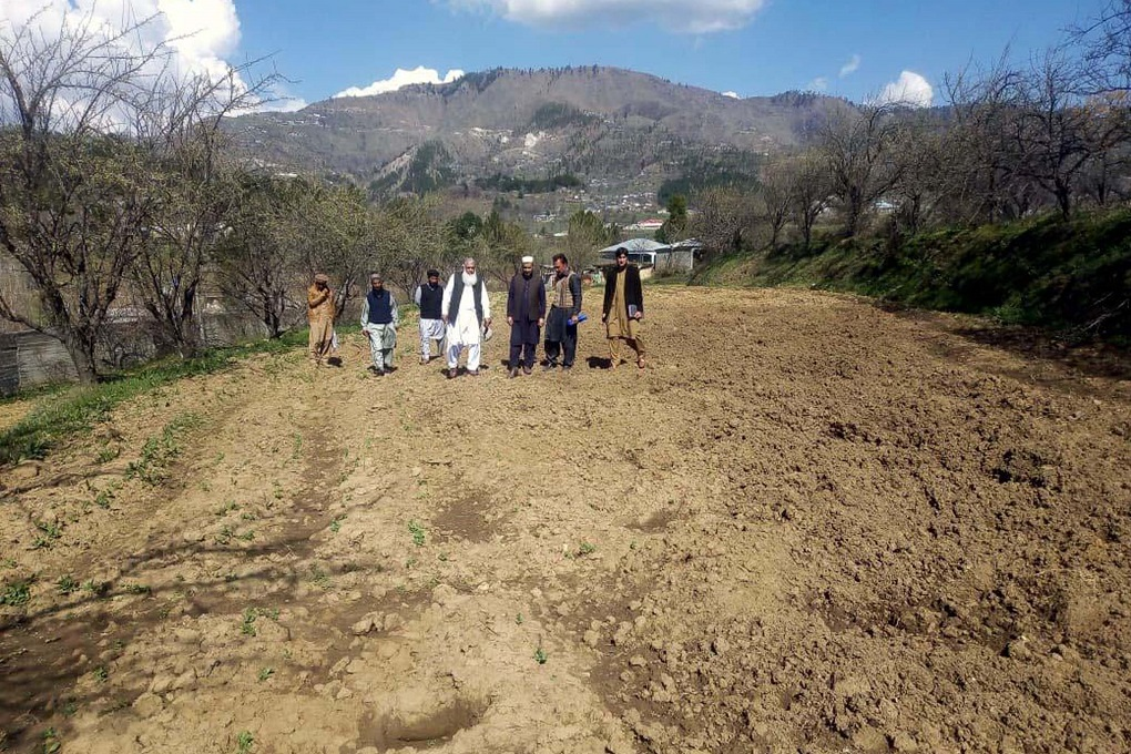A team comprising of officials from the agriculture department and the Deputy Commissioner's office inspect farm land rampaged by wild boars in Darband area of Manshera district [image by: Adeel Saeed]