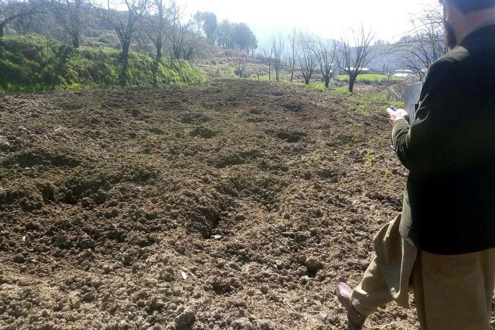 محکمہ زراعت کا ایک اہلکار ضلع مانسہرہ کے علاقے دربند میں جنگلی سؤر سے تباہ شدہ کھیت کا معائنہ کر رہا ہے - ( تصویر بشکریہ عدیل سعید )