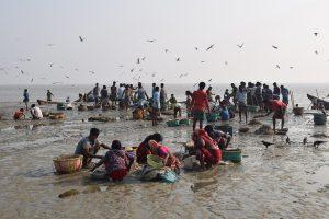A fish market on the Bangladeshi coast [Image by: Rafiqul Islam Montu]