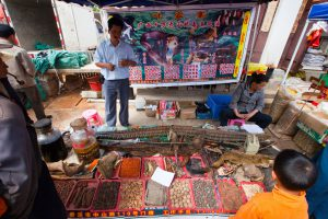 Exotic animals as traditional medicine on market day in Shaxi, Yunnan Province, China (Source: dbimages/Alamy)