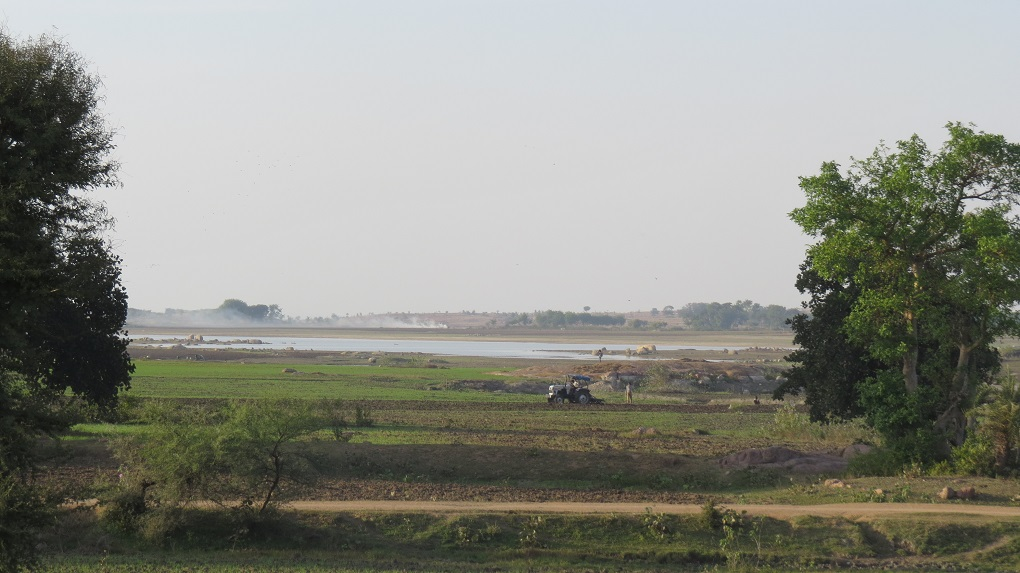 Submerged land near Matatila dam [image by: Mohit M. Rao, Astha Choudhary]