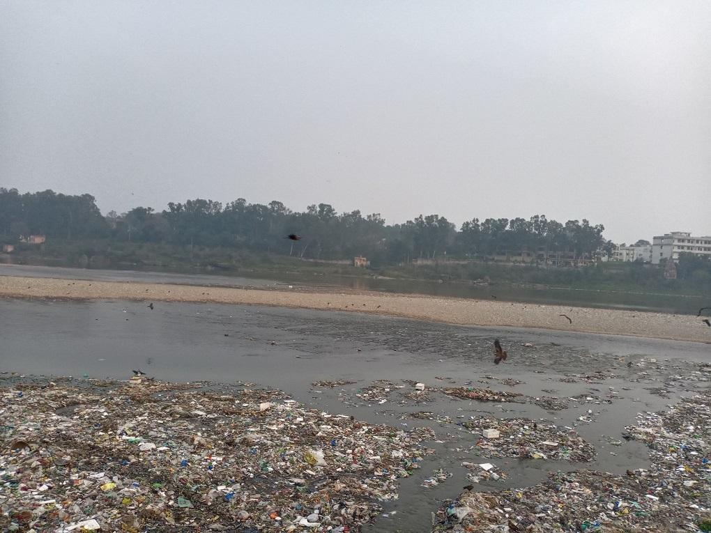 Black kites circling overhead Tawi River in Prem Nagar [image by: Rishika Pardikar]