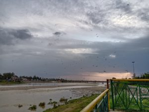 The low level of river combined with blockages from dumped waste leaves the Tawi sluggish near Jammu [image by: Rishika Pardikar]