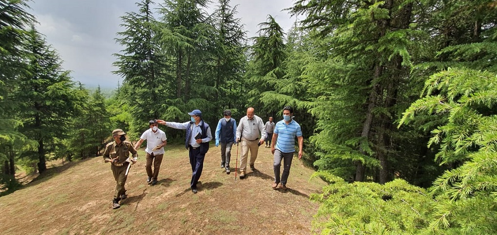 Kashmir's Chief Conservator of Forests, Farooq Gillani, conducts inspection of South Kashmir forests after many complaints of timber smuggling [image courtesy: Jammu and Kashmir Department of Information and Public Relations]