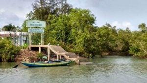 Sundarbans,Sajnekhali wildlife sanctuary