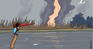 Oil well explosion Assam cartoon