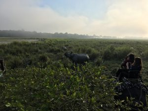 Tourists on elephants take photos of rhinos in Kaziranga National Park [image by: Sadiq Naqvi]