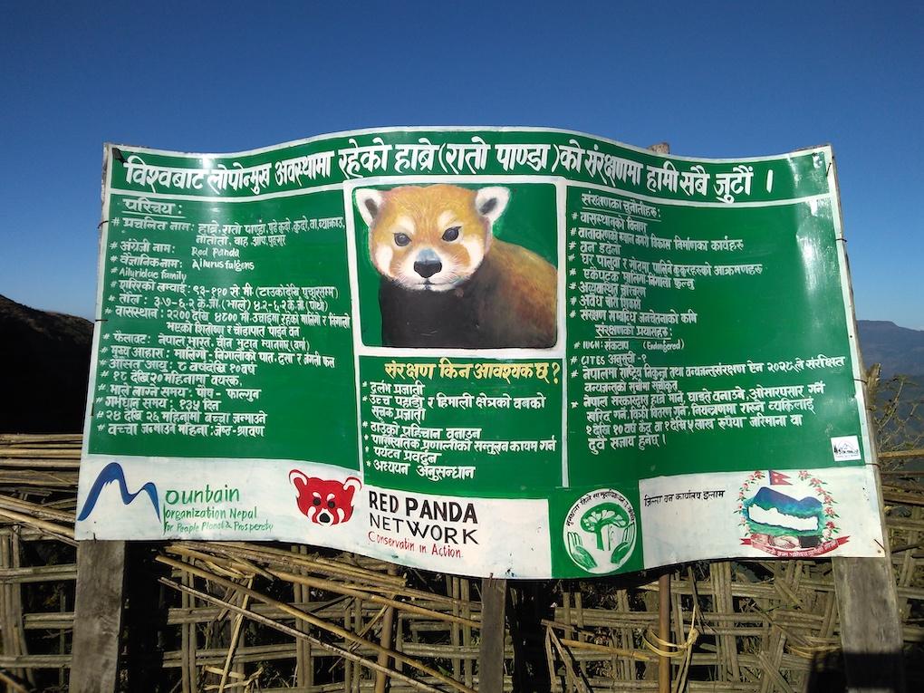 Red Panda Network conservation banner, Jaubari, Nepal, Sangay Tamang