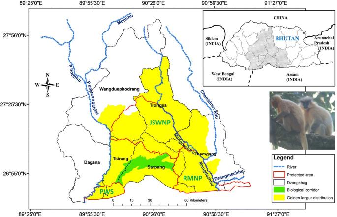 Map of golden langur distribution in Bhutan [source: Thinley et al. 2019]