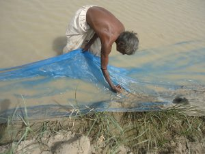 A fisher in Badin catches trash fish using an outlawed net that has no mesh at all [Image by: Muhammad Abbas Khaskheli]