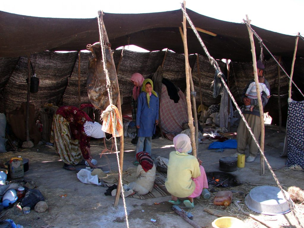 Bakarwals erect temporary villages in low-lying areas during the winter [image by: Professor Mohammad Nafees]