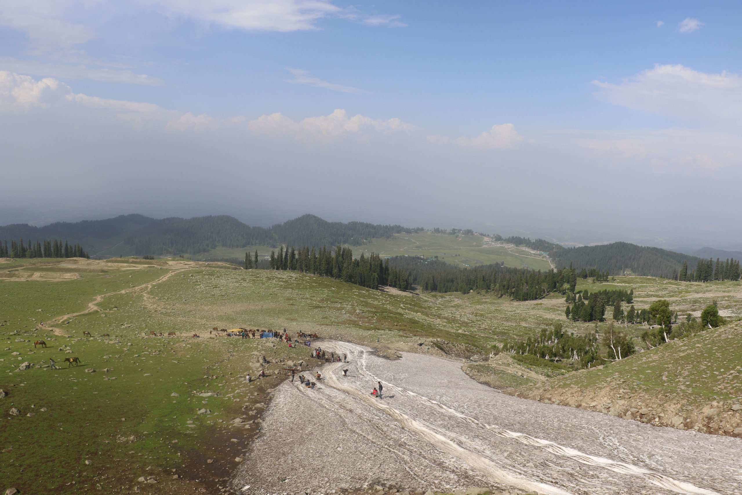 Khilanmarg meadow at Gulmarg where tourists visit and medicinal plants have vanished [image by: Mudassir Kuloo]
