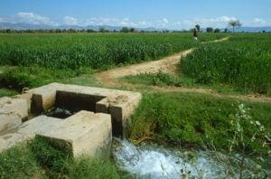 Irrigation Punjab Pakistan, Charles Bowman / Alamy