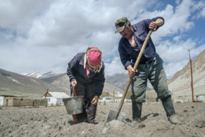Planting potatoes near the Pamir Highway, Tajikistan. [Image: Alamy]