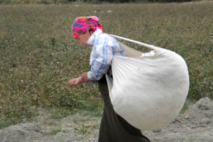 A worker on a cotton farm in Uzbekistan (Image by MARKA / Alamy)